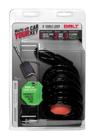 6FT. CABLE LOCK GM CENTER CUT